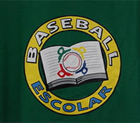 Support for After-School Baseball Program for Disadvantaged Youth